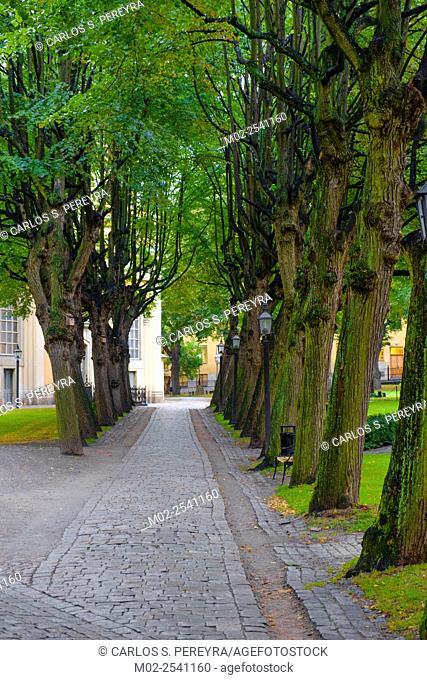 Park in Stockholm, Sweden