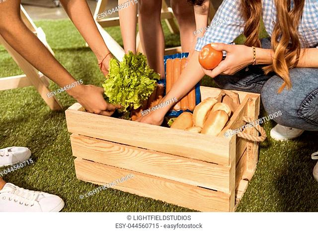 Cropped shot of young women holding ingredients for barbecue from picnic basket