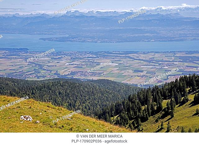 View from La Dôle, mountain of the Jura, canton of Vaud, overlooking Lake Geneva and Alpine mountain peaks of the Swiss Alps in Switzerland