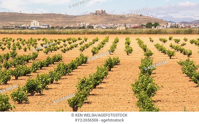 Consuegra, Toledo Province, Castilla-La Mancha, Spain. The town, castle and windmills in distance seen over vineyards