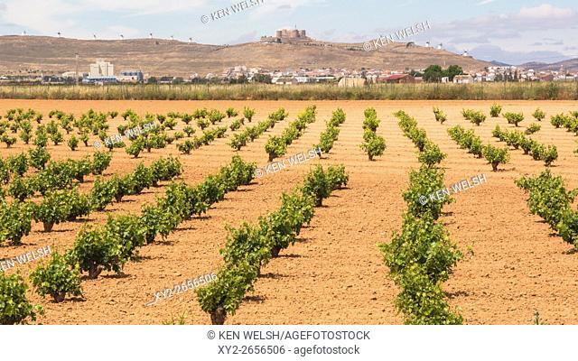 Consuegra, Toledo Province, Castilla-La Mancha, Spain. The town, castle and windmills in distance seen over vineyards