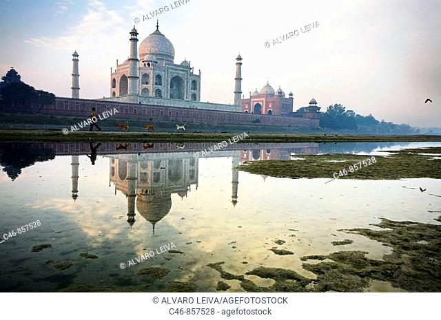 Taj Mahal seen from the East along the Yamuna River, Agra, Uttar Pradesh, India
