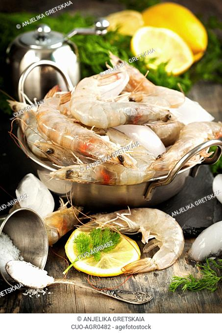 Raw Shrimps on ice with fresh dill and lemon