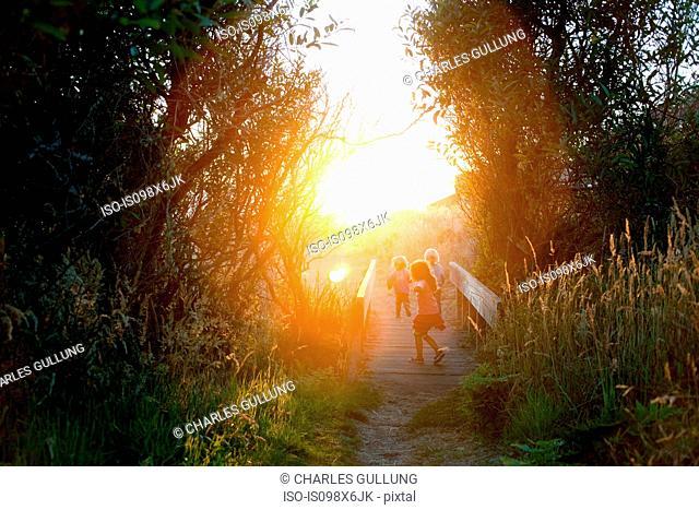 Three children on wooden footbridge