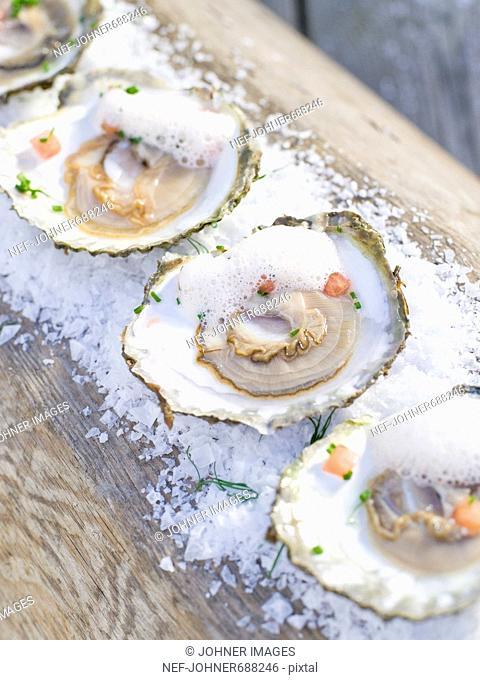 Oysters on salt, Sweden