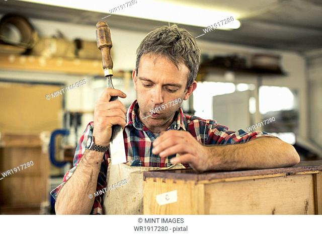 An antique furniture restorer holding a chisel and working on a polished wood surface, blowing away dust