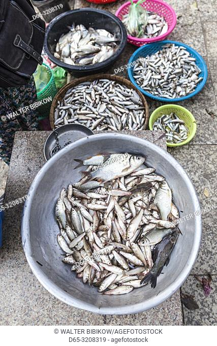 Cambodia, Phnom Penh, Tonle Sap Riverfront, fish market