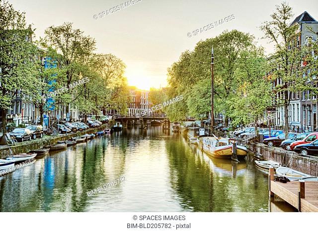 Treelined canal, Venice, Italy