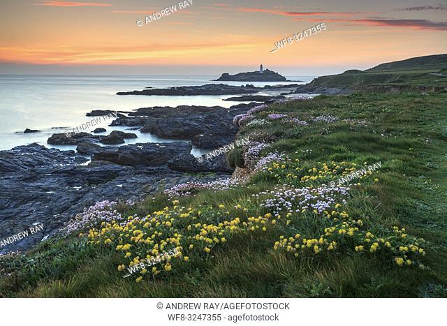 Spring flowers provide the foreground interest in this image, which features Godrevy Lighthouse in St Ives Bay, on the North coast of Cornwall