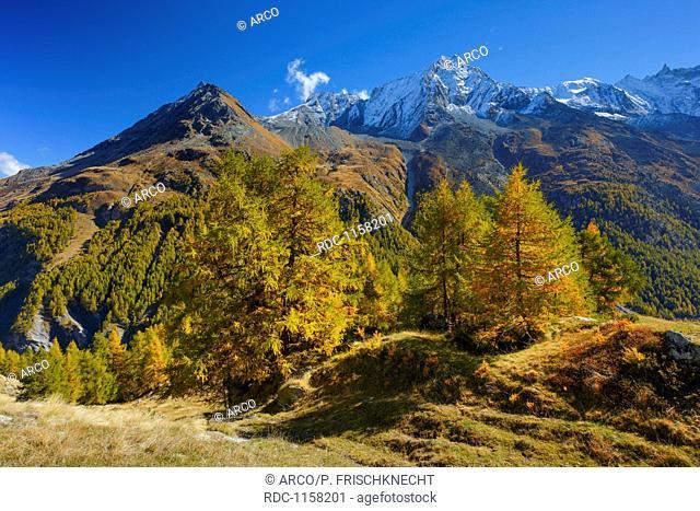 Grande Dent de Veisivi, Dent de Perroc, Aiguille de la Tsa, Wallis, Schweiz