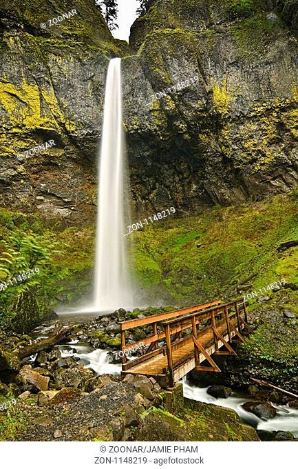 Scenic Elowah Falls in the Columbia River Gorge