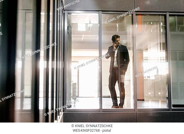 Businessman standing at window making a phone call
