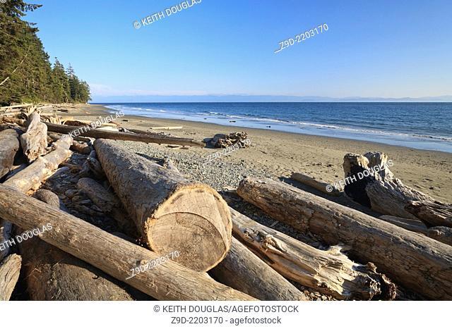 China Beach, Juan de Fuca Provincial Park, Vancouver Island, BC