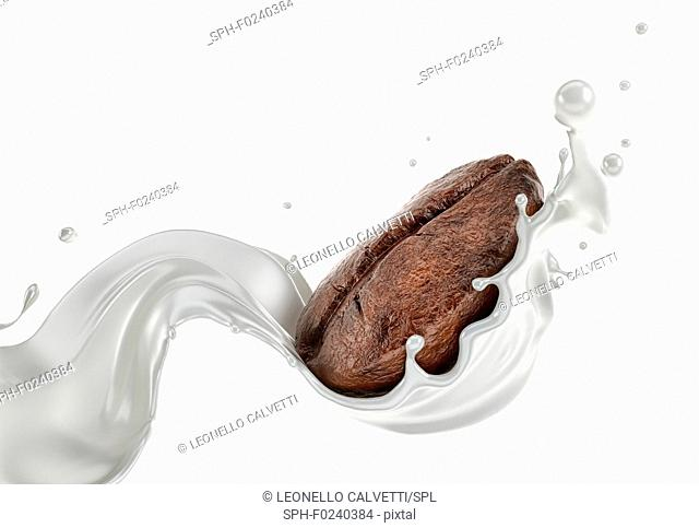 Coffee bean splashing with a milk stream wave isolated on white background. Close up view