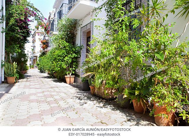 Marbella streets at old town full of flowerpots