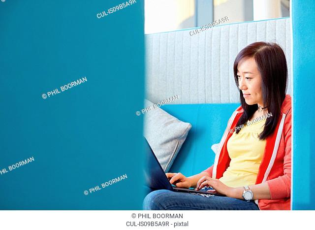 University student using laptop in modern cubicle