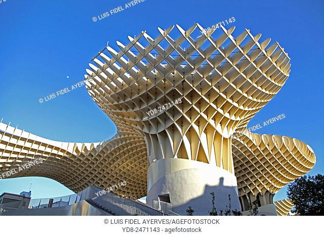 The Metropol Parasol Mushrooms Seville Andalusia Spain. World