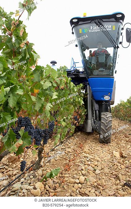Vintage. Combine harvester. Logroño, La Rioja. Spain