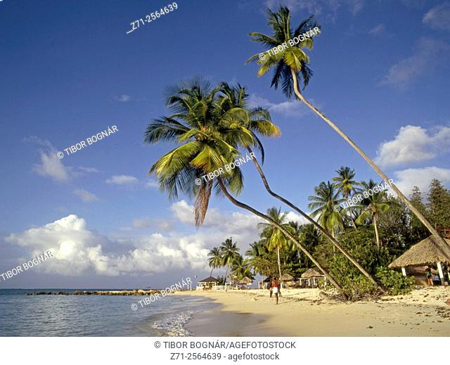Caribbean, Tobago, Pigeon Point, beach,