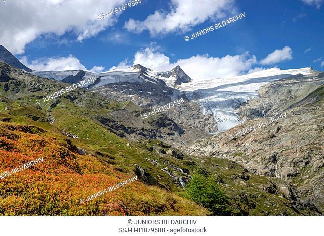 Tauern Valley, in background the mountains Schwarze Wand, Hoher Zaun and Grossvenediger. Hohe Tauern National Park, Tyrol, Austria