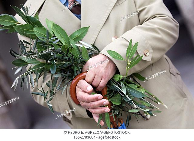 Man with a bouquet of Laurel and hands Olivo, during Easter in Lugo