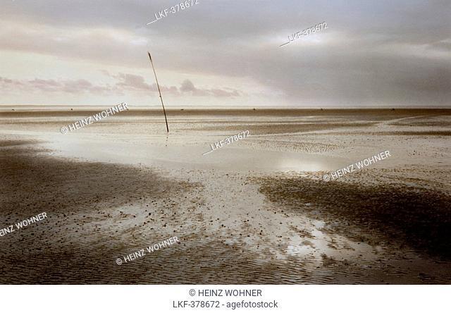 Wadden Sea at low tide, Neuwerk island, Hamburg Wadden Sea National Park, North Sea, Hamburg, Germany, Europe