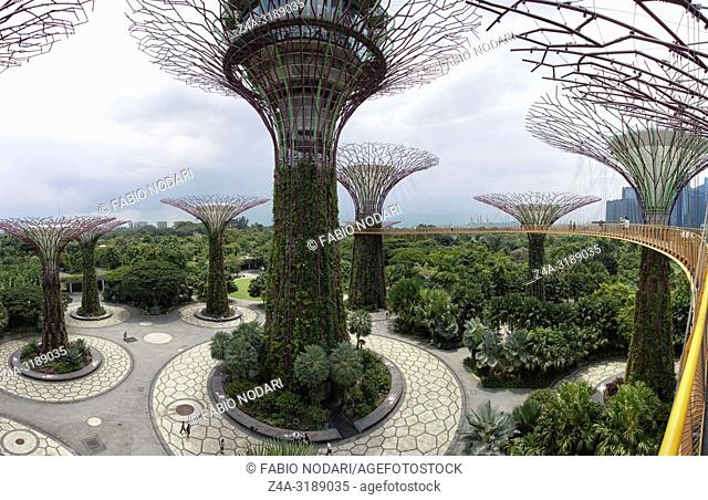 Singapore, Singapore - October 16, 2018: Supetree Grove at the Gardens by the Bay in Singapore