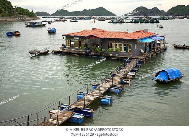 Floating house in Cat Ba port  Ha Long Bay  Qung Ninh province, Vietnam