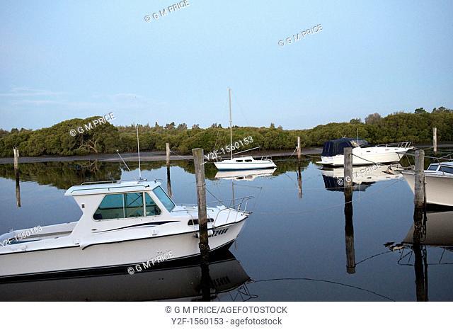 boats moored at Tea Gardens, Australia