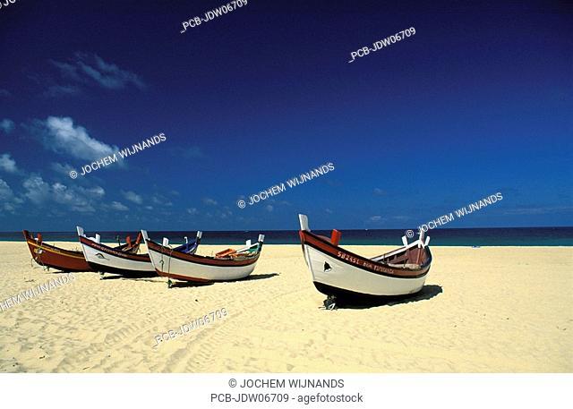 The beach of the Arrabida region