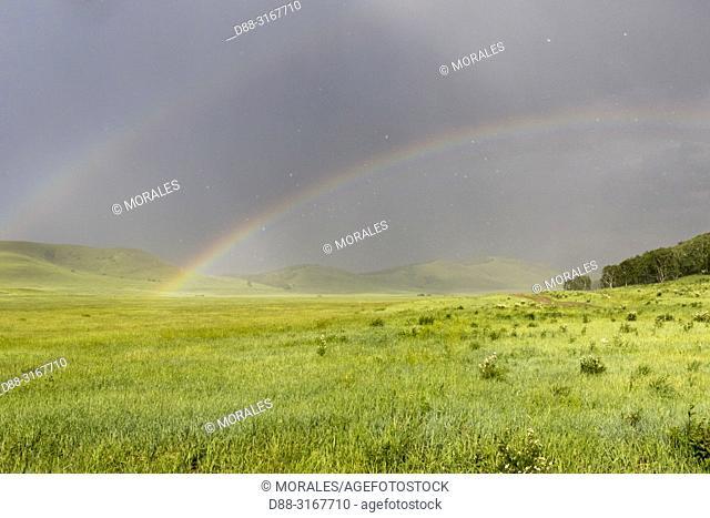 China, Inner Mongolia, Hebei Province, Zhangjiakou, Bashang Grassland, Colline landscape with a rainbow