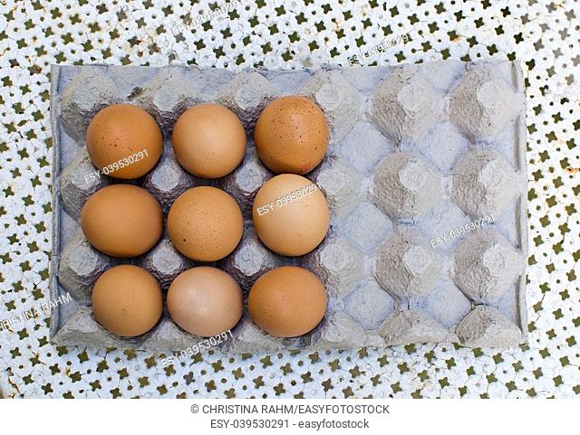 Nine fresh brown eggs in carton isolated/outdoors from above