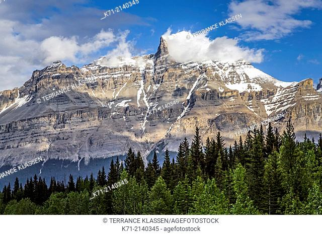 Evening view along the Icefield Parkway in Jasper National Park, Alberta