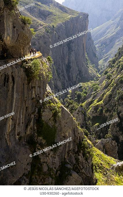 Hikers walking along the route of the Cares Canyon, in the Picos de Europa National Park, between the Urrieles and Ándara massifs, Poncebos, Cantabria, Spain