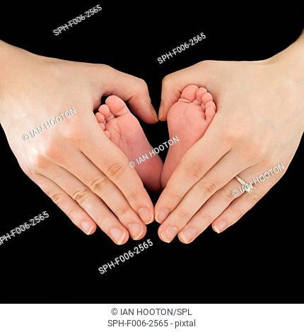 MODEL RELEASED. Maternal love, conceptual image