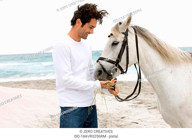 Man with horse on the beach