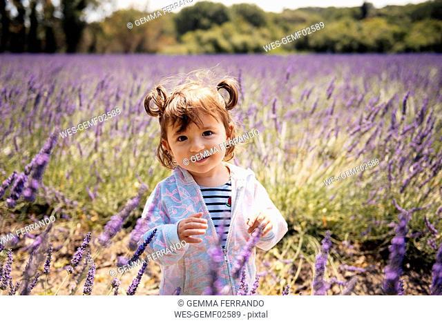 France, Grignan, portrait of smiling baby girl standing on lavender field