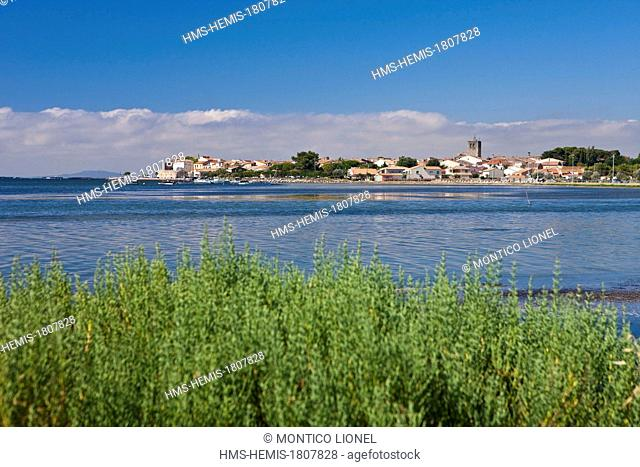 France, Herault, Bassin de Thau, Meze