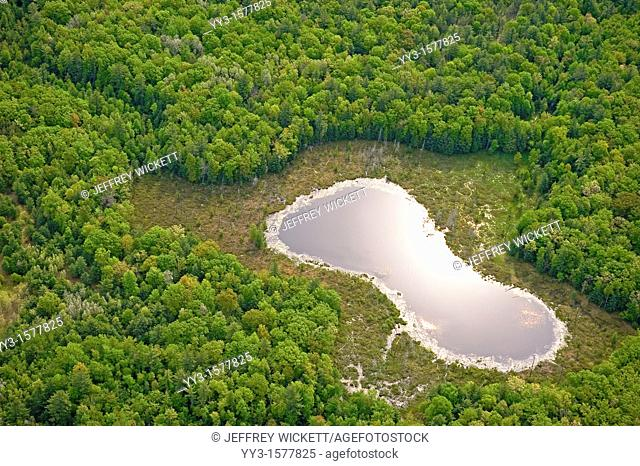 Aerial view of pond and wetlands in the Huron-Manistee National Forest in Michigan, USA