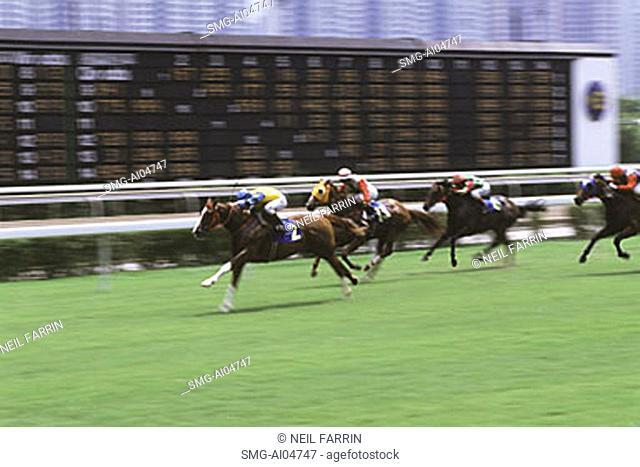 China, Hong Kong, New Territories, Shatin, Horse Racing