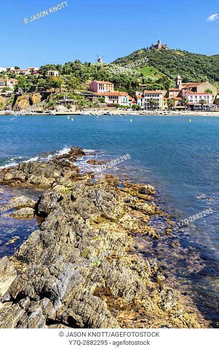Plage de Port dâ. . Avall overlooked by the Fort St. Elme and The Mill, Collioure, Côte Vermeille, Céret, Pyrénées-Orientales, Occitanie, France