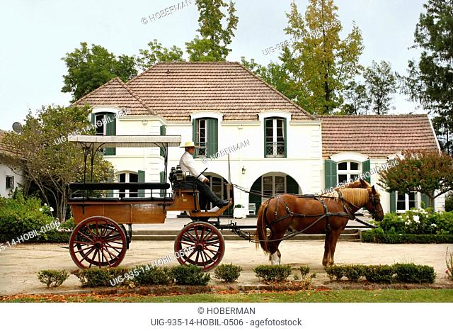 Horse Carriage, Via Manent Winery, Chile