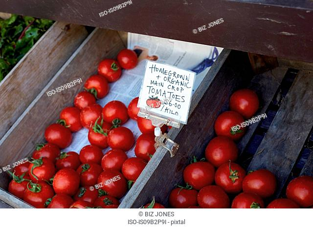 Homegrown tomatoes for sale, close-up, Cork, Ireland