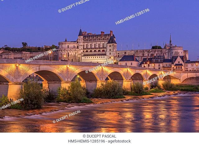 France, Indre et Loire, Loire Valley listed as World Heritage by UNESCO, Amboise, Royal castle of Amboise, Loire river banks, General Leclerc bridge