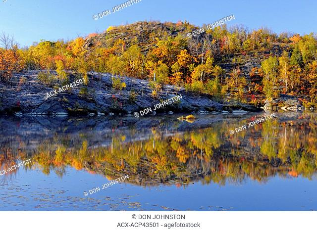 Colourful autumn reflections in a beaver pond, Greater Sudbury, Ontario, Canada