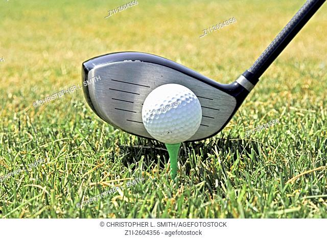 Close up of a Carbon fibre Wood golf club at the Tee