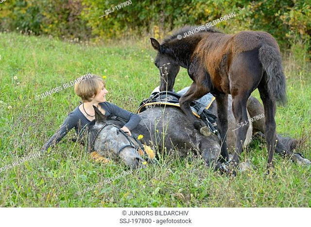 Connemara Pony. Young woman sitting next to her mare lying in a meadow. The foal standing aside, wanting to play. Germany