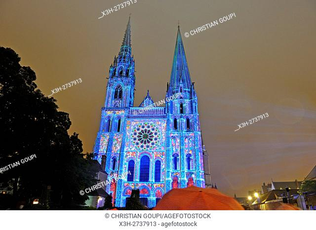 illumination on the south facade of the Cathedrale of Chartres, Eure-et-Loir department, Centre region, France, Europe