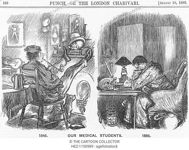 'Our Medical Students', 1886. The developments in doctors' training is illustrated in this cartoon. Major advances in medical technology and research had been...