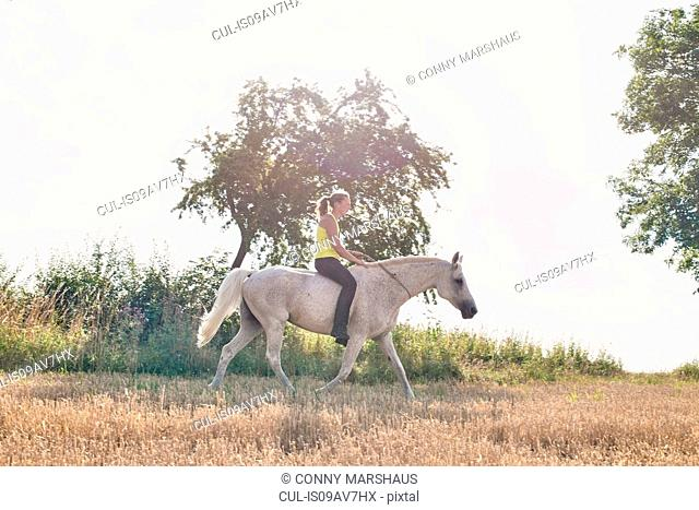 Woman riding grey horse in field